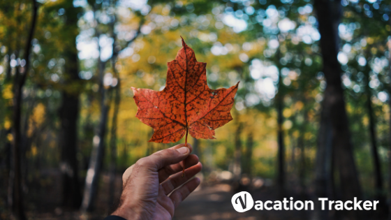 How Many Vacation Days Do You Get In Canada?