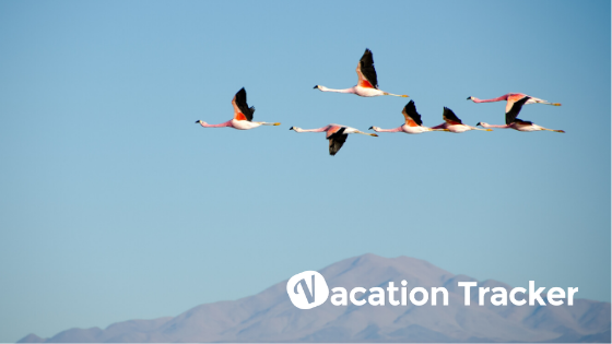 How to Build Great Team Culture - Vacation Tracker